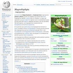 Angiospermes | Pearltrees