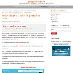 Mailchimp : Créer, éditer et gérer sa première liste d'envoi après la première connexion