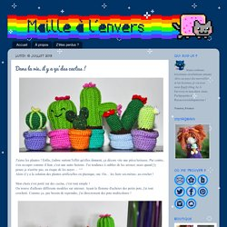 Maillalenvers: Dans la vie, il y a qu'des cactus !