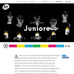 pe 242 - Juniore