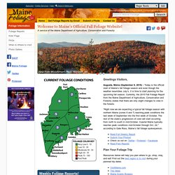 Foliage.com - Maine's Official Fall Foliage Website