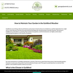 How to Maintain Your Garden in the Guildford Weather