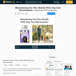 Maintaining Our Pets Health With Dog Care Glucosamine