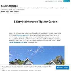5 Easy Maintenance Tips for Garden – Grass Scorpions