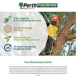 Hire An Expert Tree Maintenance Perth Service