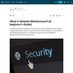 A Beginners Guide for Website Maintenance