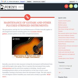 MAINTENANCE OF GUITARS AND OTHER PLUCKED STRINGED INSTRUMENTS: