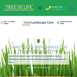 Lawn Care & Maintenance Tips Everyone Should Know – Tree of Life Landscapers