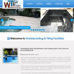 Swimming pool maintenance and repairs give your pool an astounding look