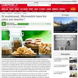Et maintenant, Micronutris lance les pâtes aux insectes ! - 09/06/2015 - ladepeche.fr