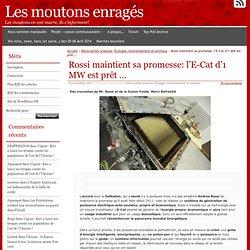 Rossi maintient sa promesse: l'E-Cat d'1 MW est prêt …