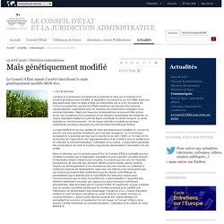 CONSEIL D ETAT 15/04/16 Maïs génétiquement modifié - Le Conseil d'État annule l'arrêté interdisant le maïs génétiquement modifié MON 810.