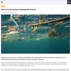 Mais où est donc passé le plastique des océans ?