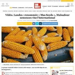 Vidéo. Landes: renommée «Mas Seeds», Maïsadour semences vise l'international