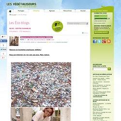 Maisons en bouteilles plastiques: GENIAL!