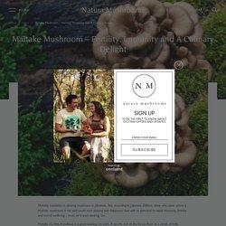 Maitake Mushroom Health Benefits, Usage and Side Effects
