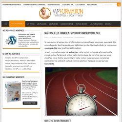 Maîtriser les transients pour optimiser votre WordPress