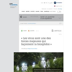 CNRS 13/05/20 « Les virus sont une des forces majeures qui façonnent la biosphère »