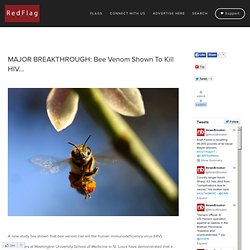 MAJOR BREAKTHROUGH: Bee Venom Shown To Kill HIV
