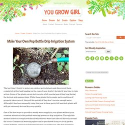 Make Your Own Pop Bottle Drip Irrigation System | You Grow Girl