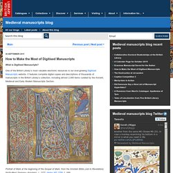 How to Make the Most of Digitised Manuscripts