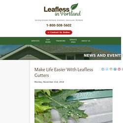 Make Life Easier With Leafless Gutters