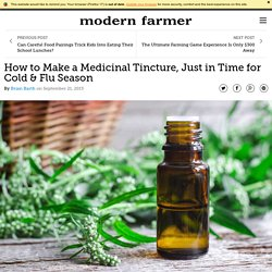 How to Make a Medicinal Tincture, Just in Time for Cold & Flu Season