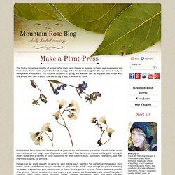 Make a Plant Press