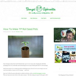 How To Make TP Roll Seed Pots