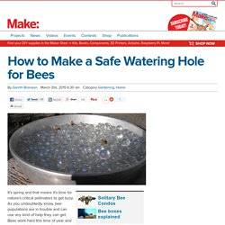 How to Make a Safe Watering Hole for Bees - Make: