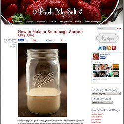 How to Make a Sourdough Starter: Day One — Pinch My Salt