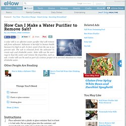How Can I Make a Water Purifier to Remove Salt?