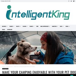 Make Your Camping Enjoyable With Your Pet Dog