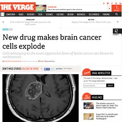 New drug makes brain cancer cells explode