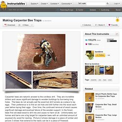 Making Carpenter Bee Traps