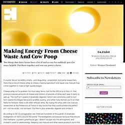 Making Energy From Cheese Waste And Cow Poop
