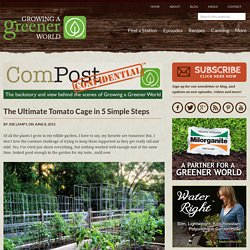 Making a Strong DIY Tomato Cage - GrowingAGreenerWorld.com