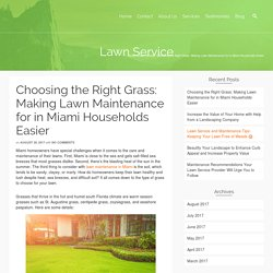 Choosing the Right Grass: Making Lawn Maintenance for in Miami Households Easier