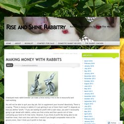 MAKING MONEY WITH RABBITS
