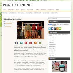 Dye - Dyes From Plants - Pioneer Thinking