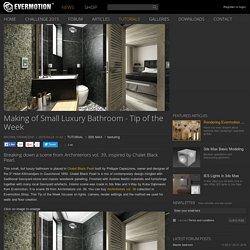 Making of Small Luxury Bathroom - Tip of the Week