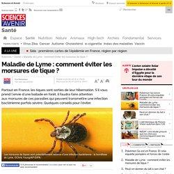 Maladie de Lyme : comment éviter les morsures de tique ?