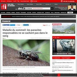 RFI 23/09/16 Maladie du sommeil : les trypanosomes se cachent dans la peau et non dans le sang