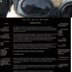 Maladies du Chien - Brutus le bouledogue