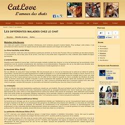 Les maladies les plus courantes qui touches les chats (PIF, FelV, FIV,...)
