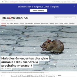 THECONVERSATION 14/05/20 Maladies émergentes d'origine animale : d'où viendra la prochaine menace ?