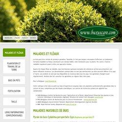 Maladies et fléaux - Buxuscare.com