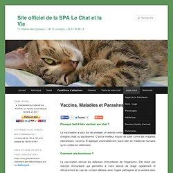 Site officiel de la SPA Le Chat et la Vie