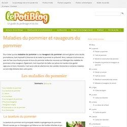 PotiBlog guide jardinage Bio