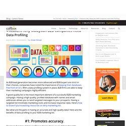Why Malaysian B2B Companies need Data Profiling - B2B Lead Generation Company Malaysia